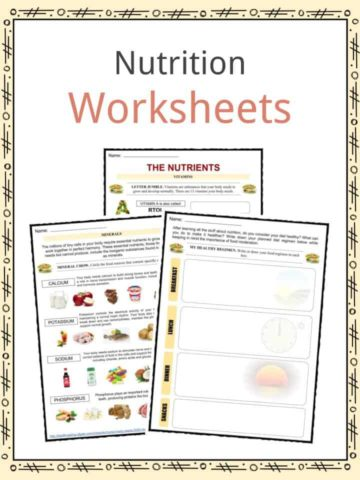 Nutrition Worksheets