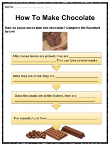 essay on chocolate for class 3
