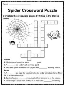 spider worksheets for third grade spider best free printable worksheets. Black Bedroom Furniture Sets. Home Design Ideas