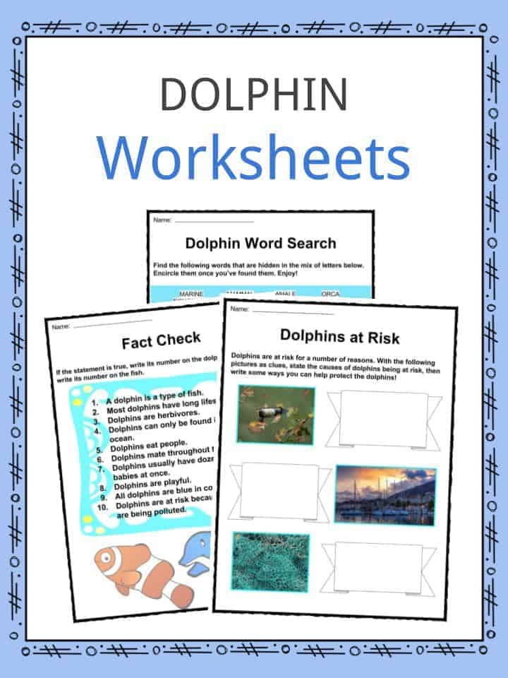 Dolphin Facts Worksheets Species Habitat For Kids