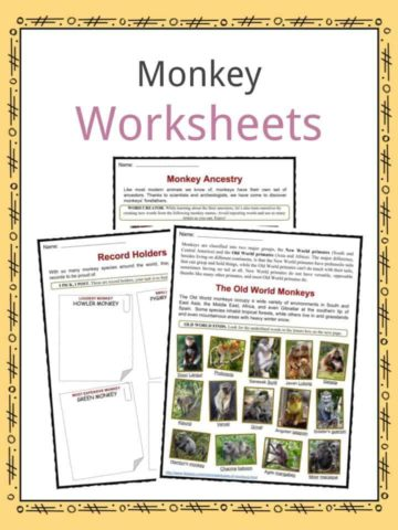 Preschool Worksheets Texas State