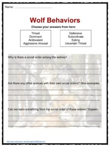 Third Grade Telling Time Worksheets Excel Wolf Facts Worksheets  Habitat Information For Kids Algebra 1 Worksheets Answers Word with Independent Dependent Probability Worksheet Pdf Download Includes The Following Worksheets Silent Letters Worksheets Excel