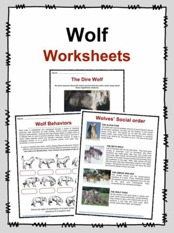 Wolf Worksheets
