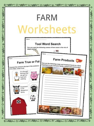 Science Worksheets and Activities for Kids | KidsKonnect
