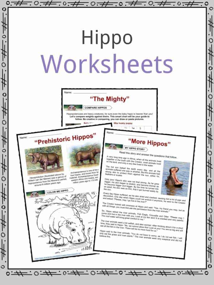 Hippo Worksheets