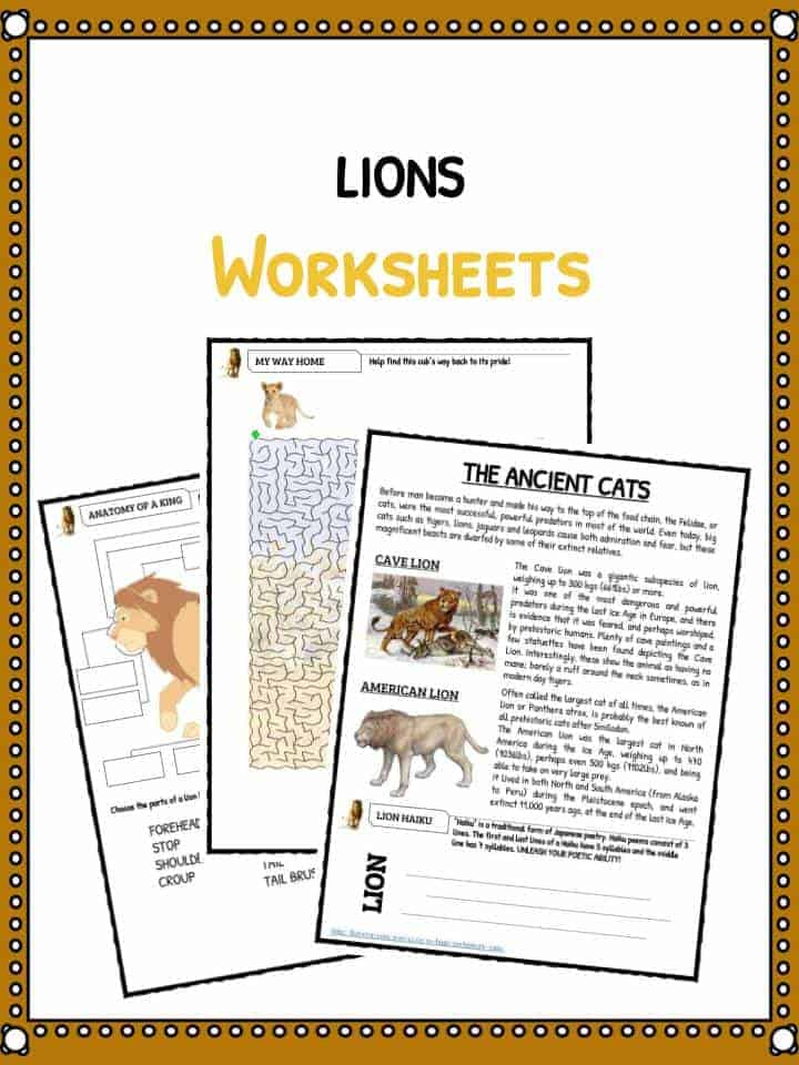Lion Facts, Worksheets & Information for Kids