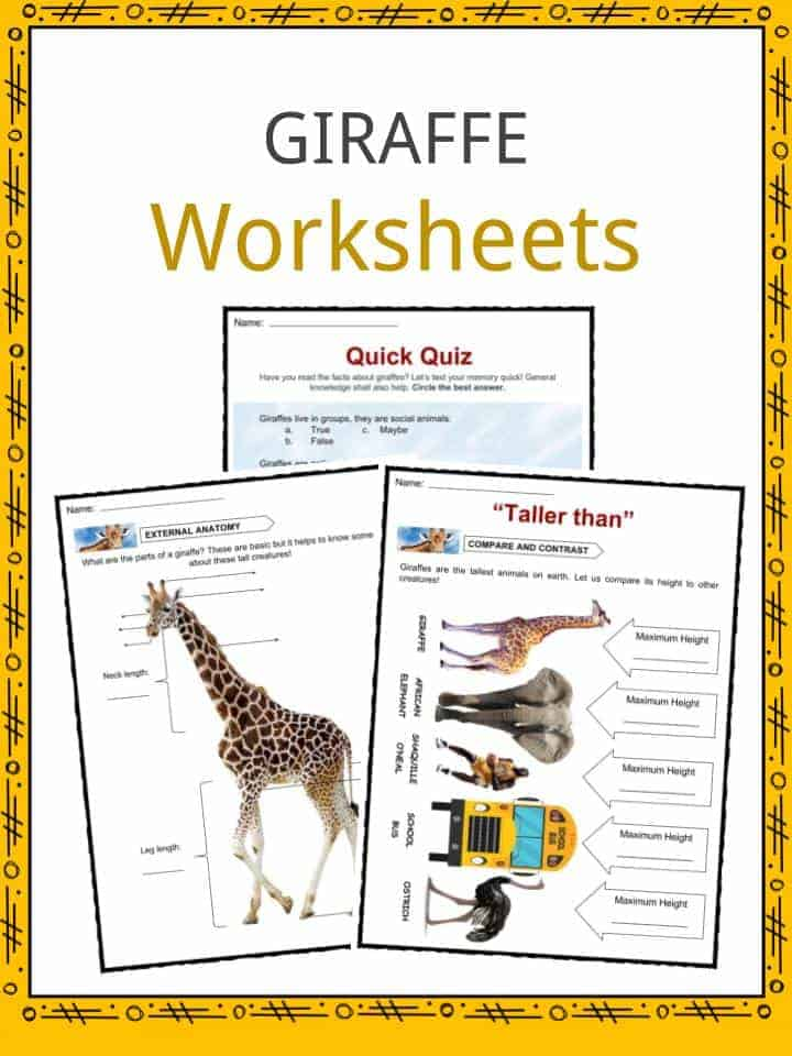 Giraffe Worksheets