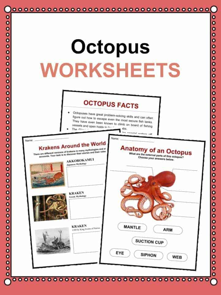 photo about Were Moving Up to Kindergarten Printable Lyrics referred to as Octopus Info, Worksheets Habitat Written content For Young children