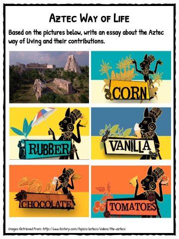 the aztecs essay