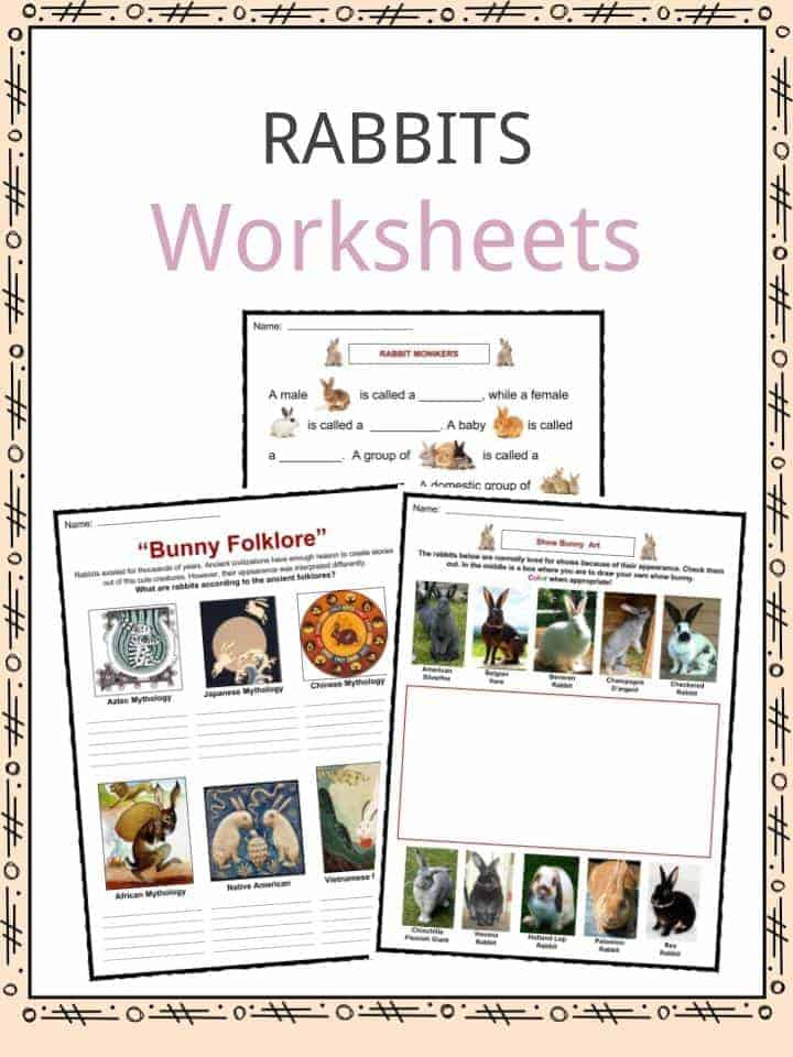 Rabbits Worksheets