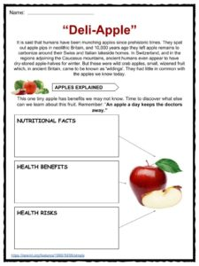 Descriptive Essay Introduction Examples Apple Facts Worksheets Health Benefits Information For Kids It Is In The  Species Malus Domestica In Blows Essay Who I Am Essay Examples also My Favorite Animal Essay Essay On Apple Fruit Compare And Contrast Essay Essay On Apple Fruit  Art Essay
