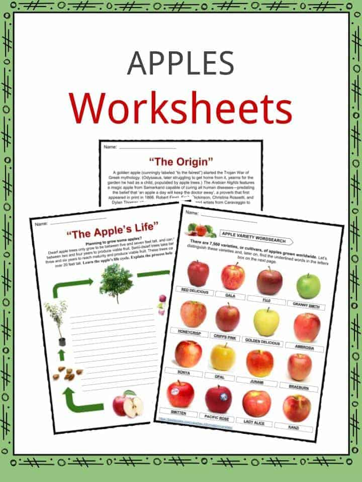 Apples Worksheets