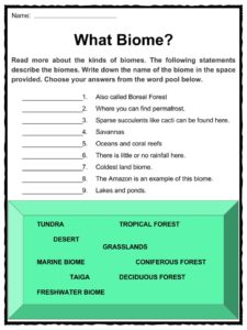 Biome Facts & Worksheets | Plant & Animal Ecology For Kids