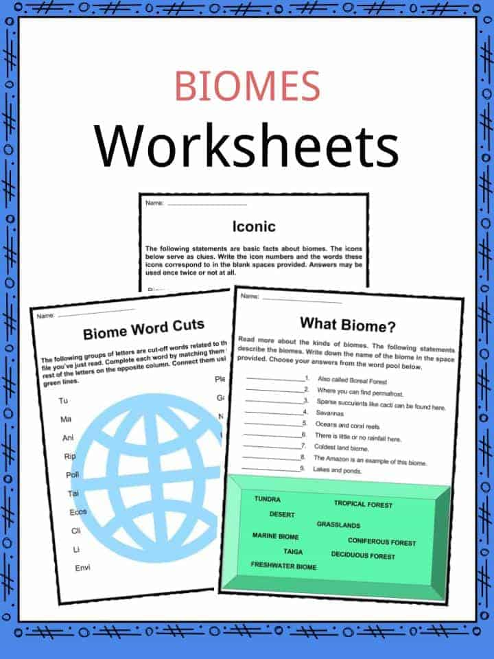 Biome Worksheets
