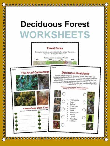 geography worksheets and activities for kids kidskonnect. Black Bedroom Furniture Sets. Home Design Ideas