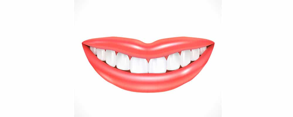 Teeth Facts