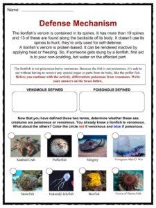 lionfish facts habitat worksheets life cycle information for kids. Black Bedroom Furniture Sets. Home Design Ideas