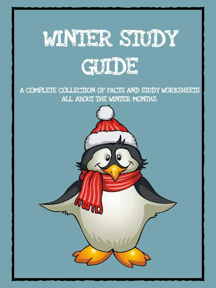 Winter Study Worksheet