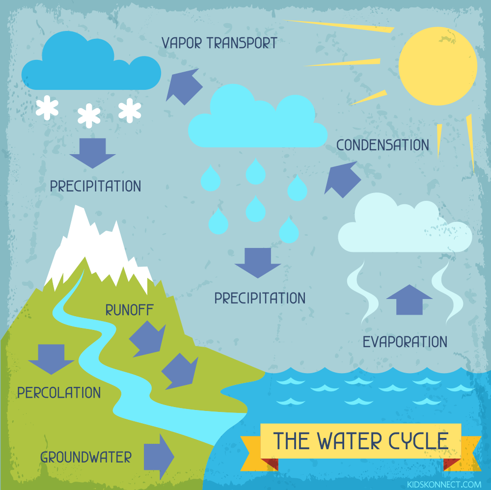 The water cycle worksheet for kids water cycle summary illustration showing how water changes state through the cycle it can be a liquid thecheapjerseys Images