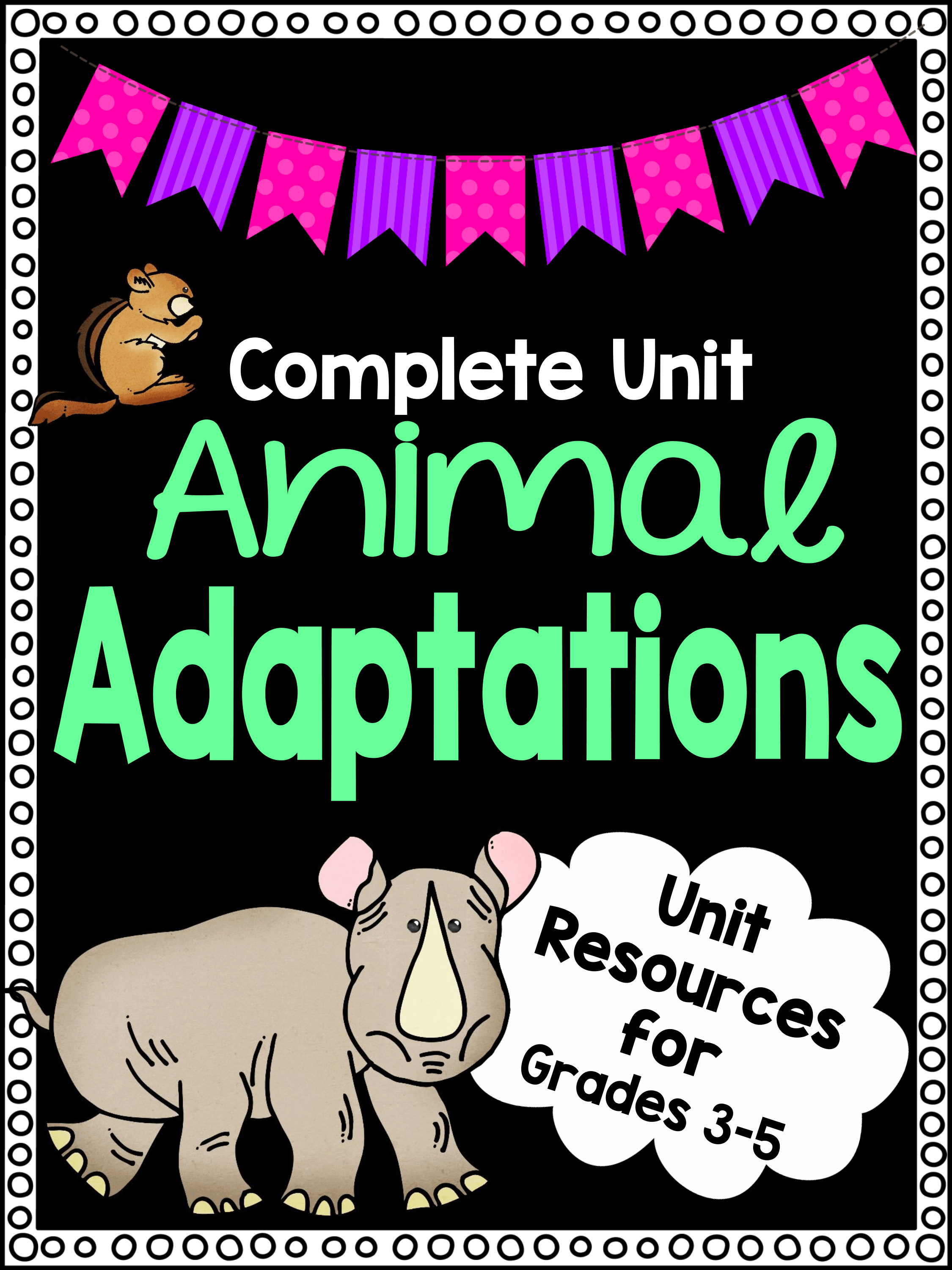 Animal Adaptations Worksheets : Animal adaptations worksheet unit plan for teachers