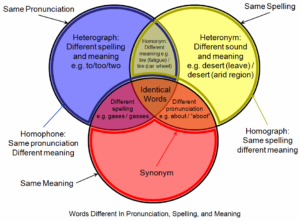 homonyms-vocabulary-facts