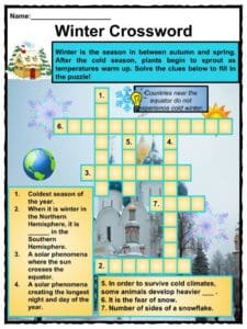 Winter Facts, Information & Worksheets For Kids   Teaching Resource