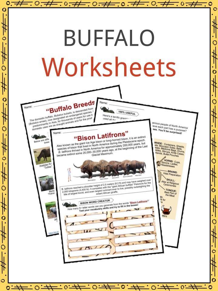 photograph about Legend of the Christmas Spider Printable called Buffalo Info, Worksheets Material for Little ones
