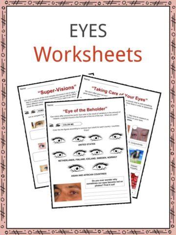 EYES Worksheet
