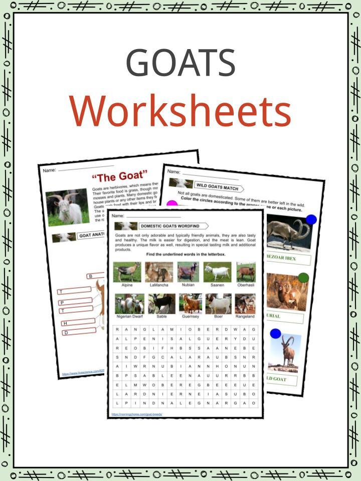 Goat Facts, Worksheets, Diet & Habitat Information for Kids