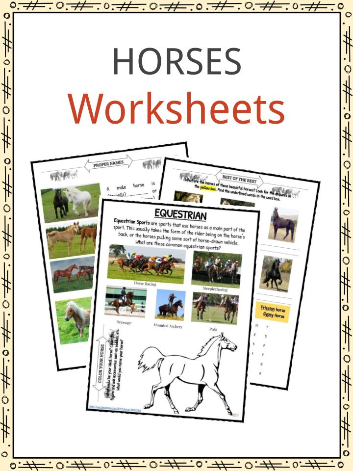 Horse Facts And Worksheets For Kids Kidskonnect