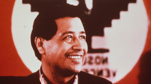 Cesar Chavez Facts, Worksheets & Information For Kids