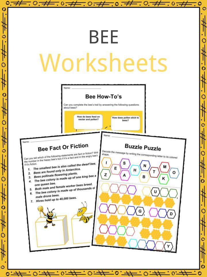 Bee Facts, Worksheets, Habitat & Life Span Information for Kids