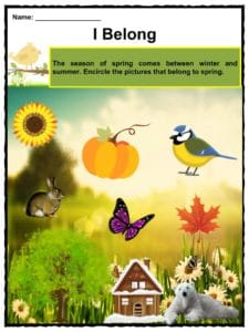 spring facts worksheets  historical information for kids spring which is one of the four seasons and the transition from winter into  summer and usually occurs during the months of march april may