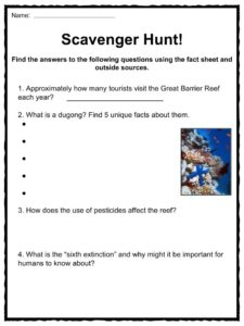 great barrier reef facts worksheets ecology geology for kids. Black Bedroom Furniture Sets. Home Design Ideas