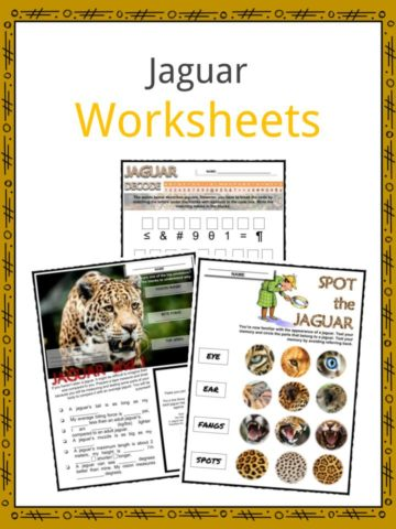 Jaguar Worksheets