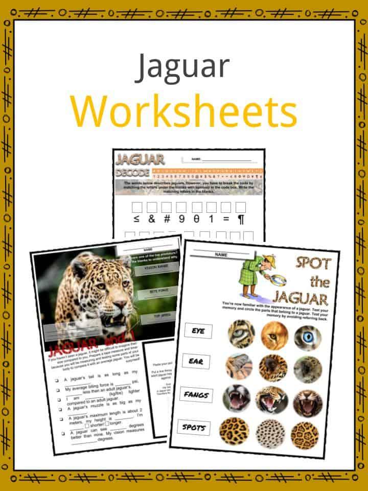 Jaguar Worksheets
