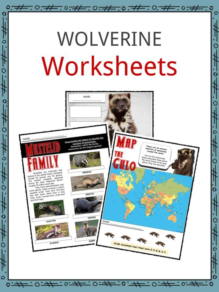 Wolverine Worksheets
