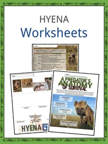 HYENA Worksheets