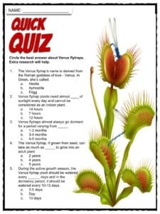 Venus Flytrap Facts Worksheets Size Habitat Amp Diet For