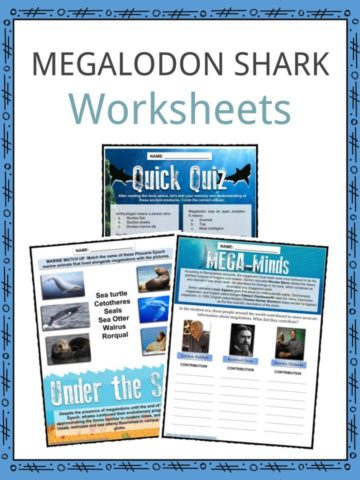 MEGALODON SHARK Worksheets