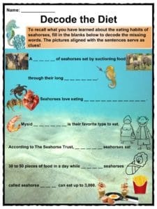 Seahorse Facts, Worksheets, Types & Habitat For Kids