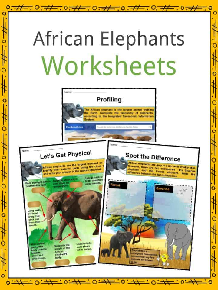 African Elephants Worksheets