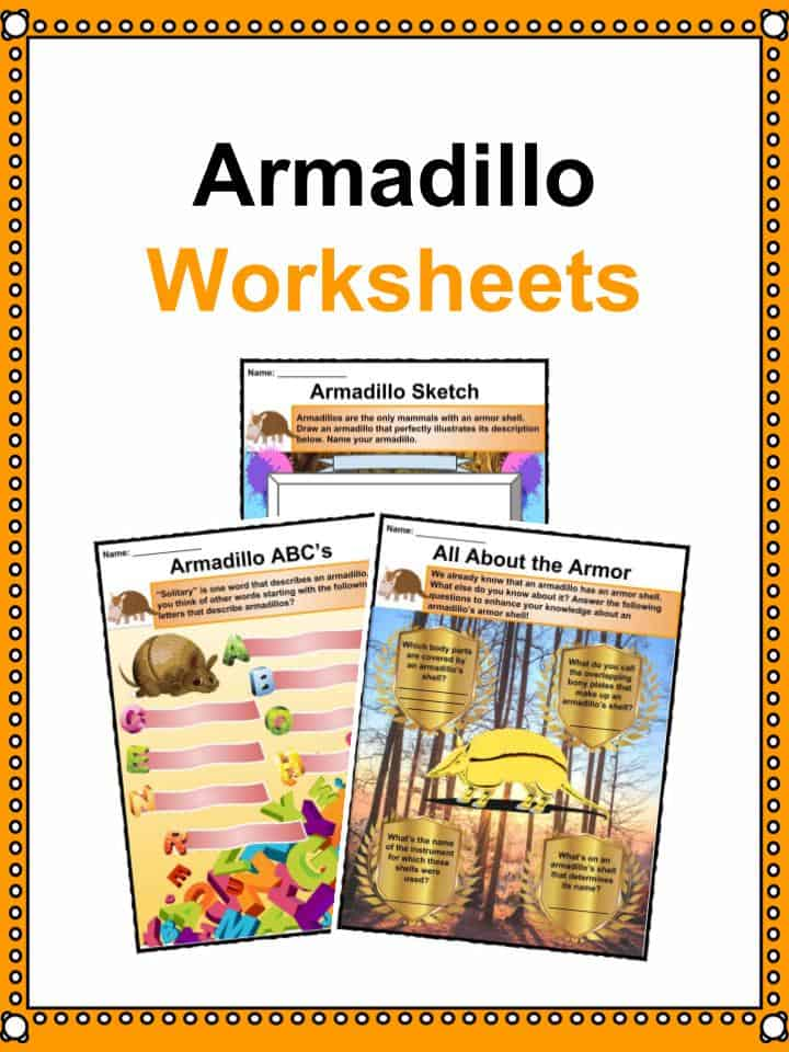 Armadillo Worksheets