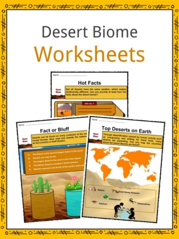 Desert Biome Worksheets