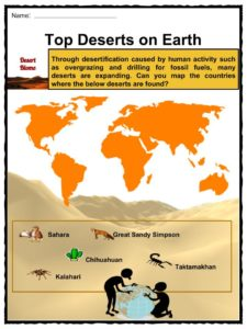Desert Biome Facts Worksheets Types Locations Flora Fauna Kids