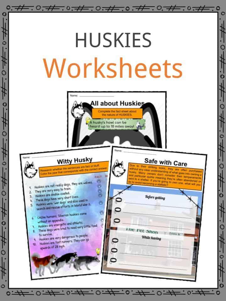 Huskies Worksheets