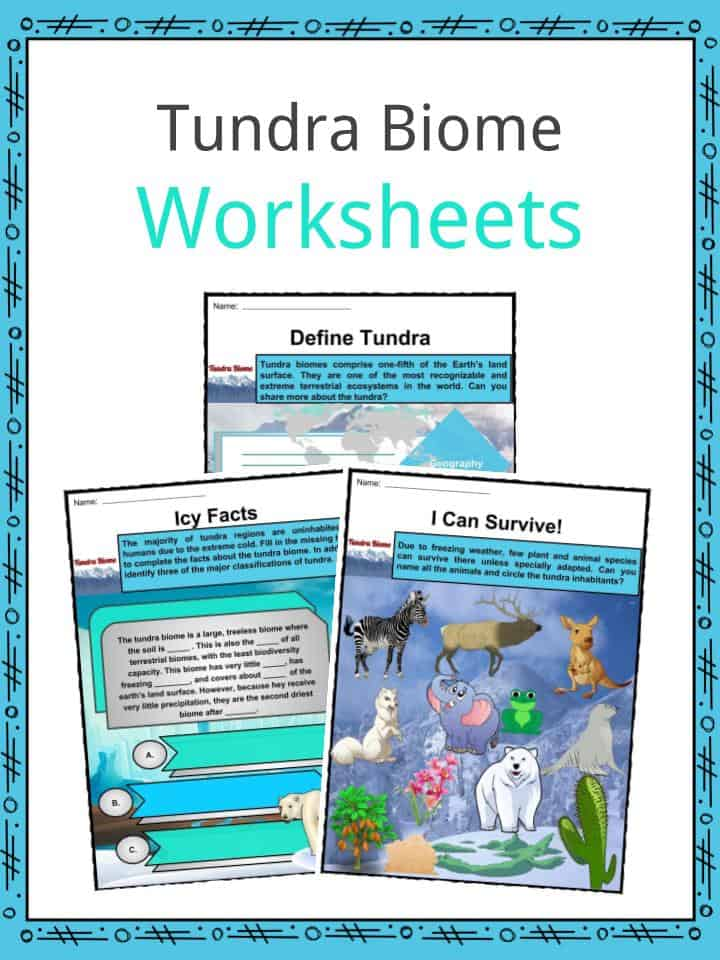 Tundra Biome Facts Worksheets Etymology Geography For Kids
