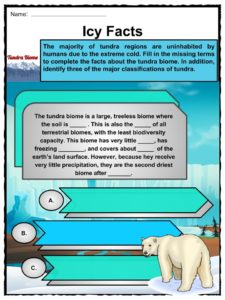 Tundra Biome Facts, Worksheets, Etymology & Geography For Kids