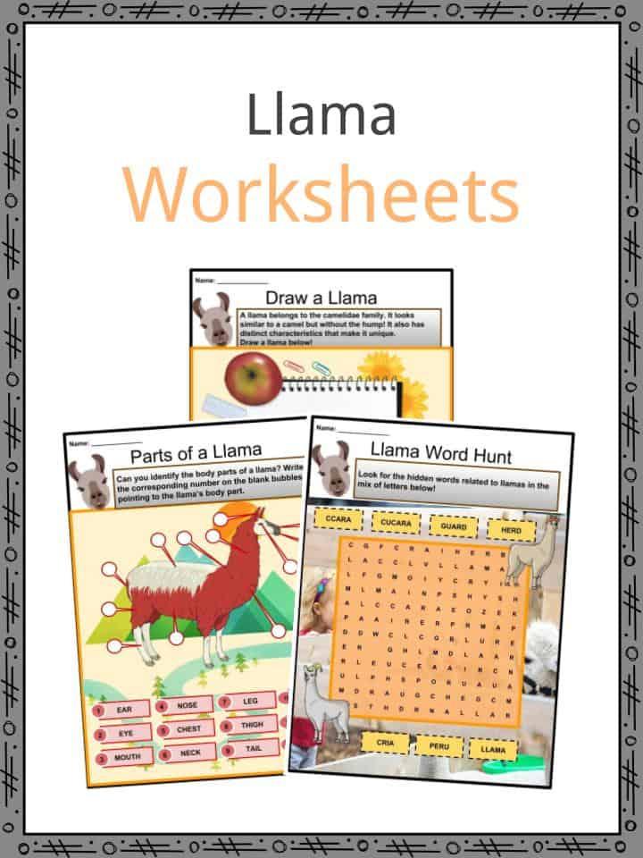Llama Worksheets