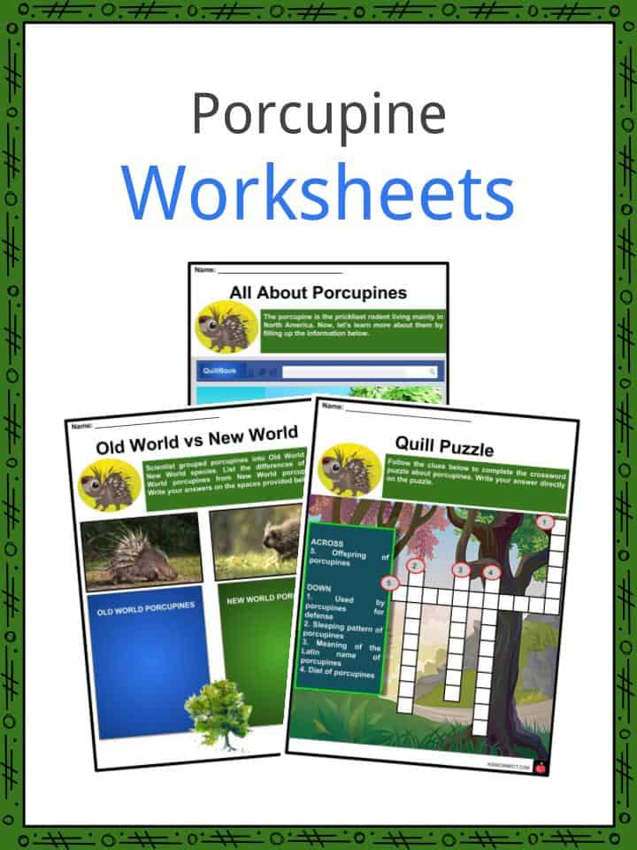 Porcupine Worksheets